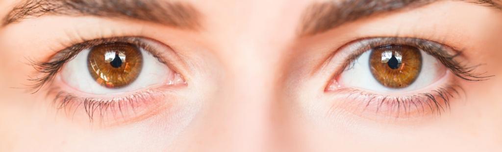 lentilles de contact en dix questions